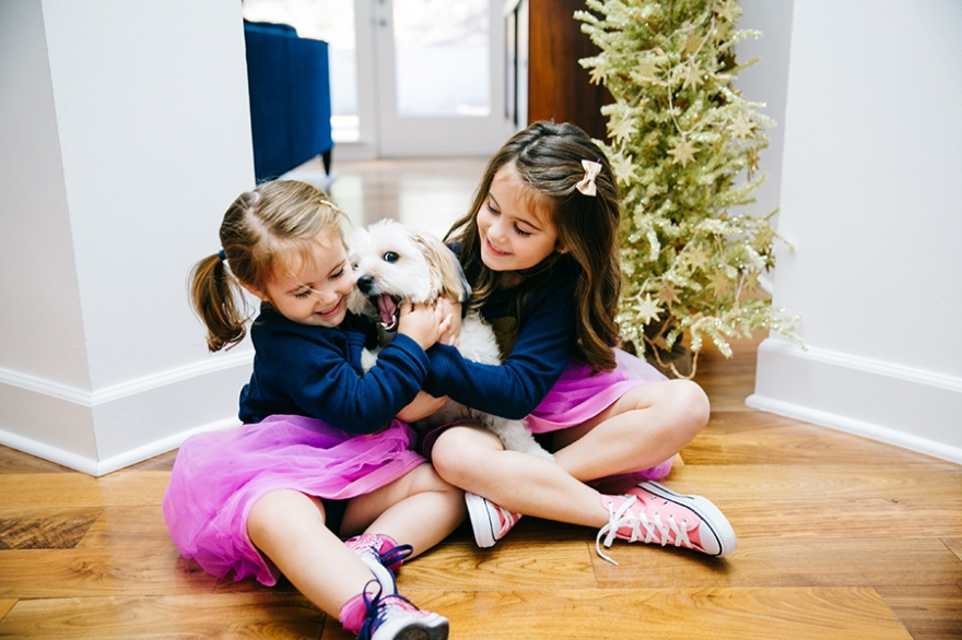Los Angeles child & pet photographer