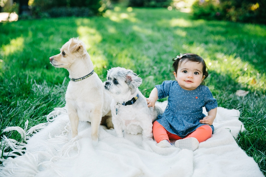 Los Angeles baby and pet photographer