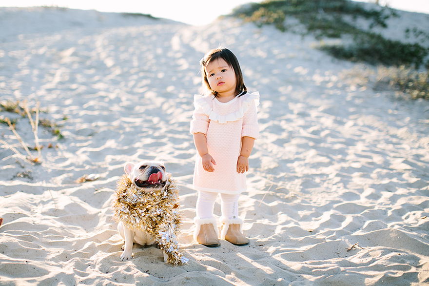 Orange County pet and baby photographer
