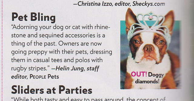 Clementine in People Magazine Style Watch {Los Angeles pet photographer}