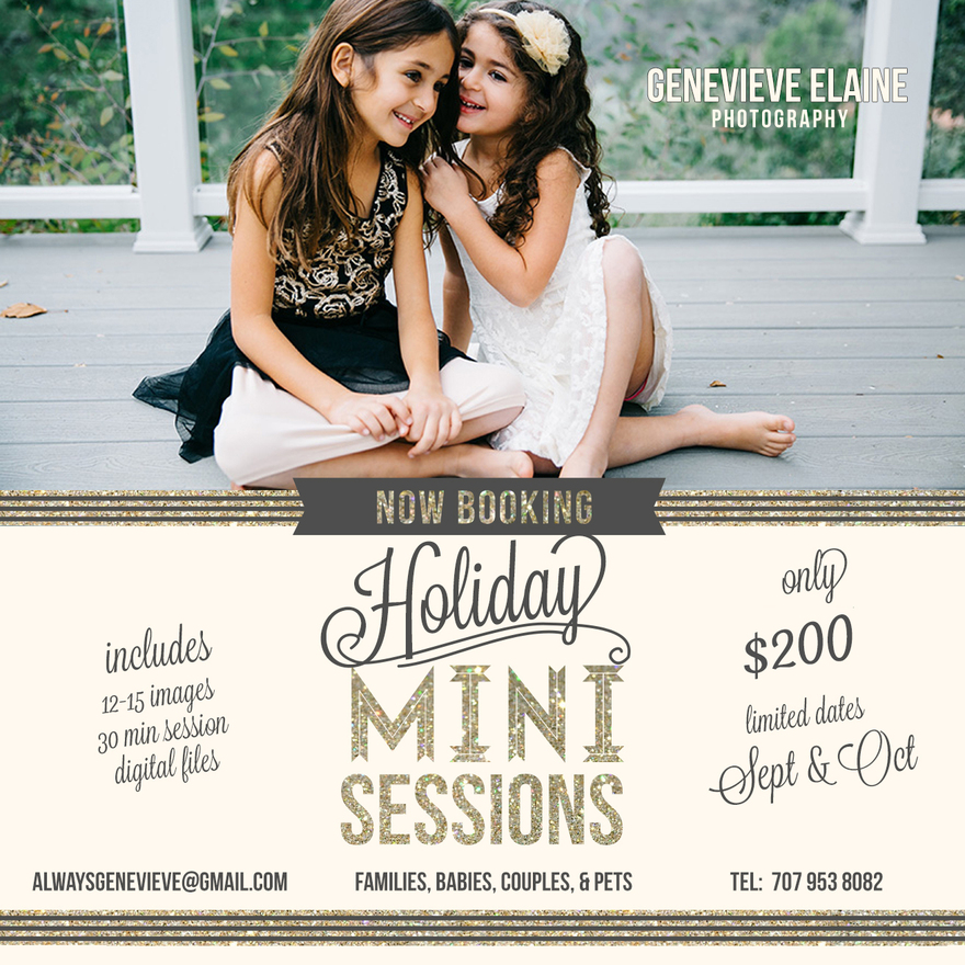 Los Angeles Holiday mini sessions