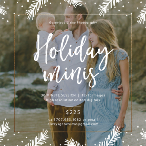Los Angeles Holiday mini session