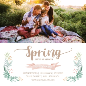 Los Angeles & Orange County spring mini sessions