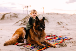 Orange county baby and pet photographer