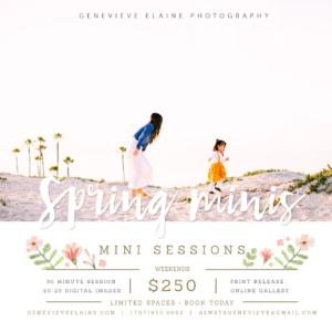 Orange County mini sessions