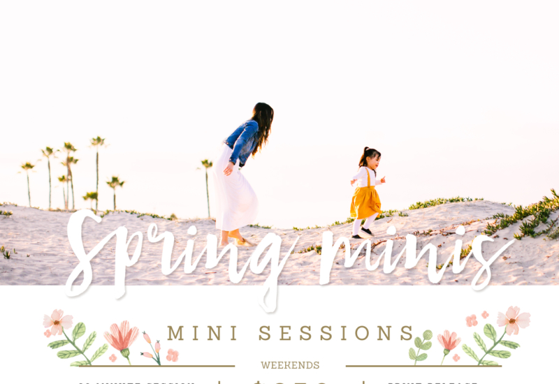 Seal Beach mini sessions